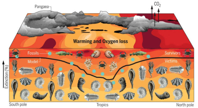Biggest extinction in Earth's history caused by global warming
