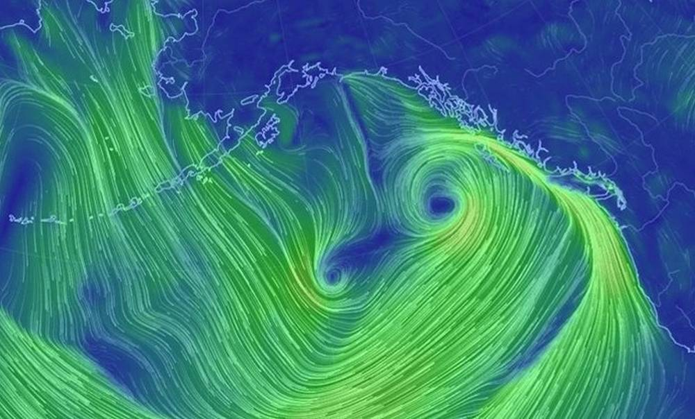 Very large Extratropical Cyclone in the Northeastern Pacific