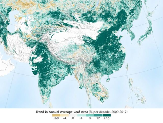China and India Lead the Way in Greening