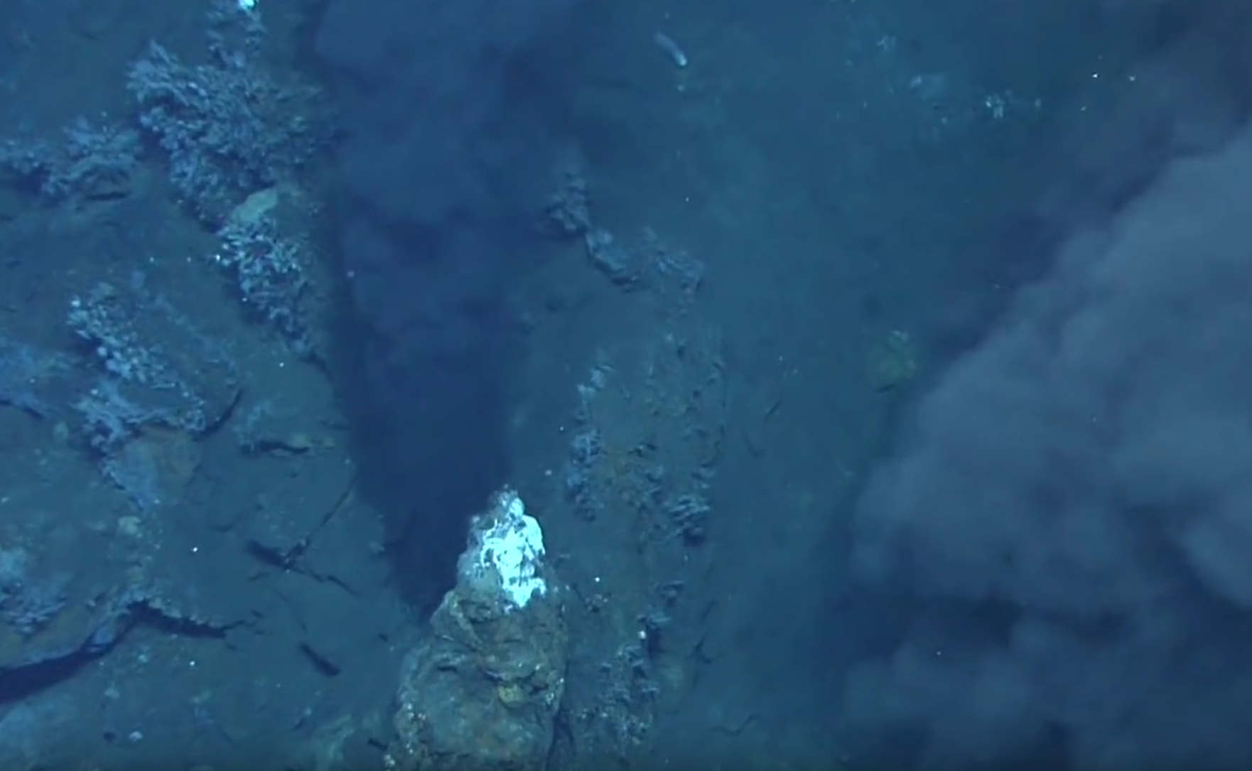 Scientists Reproduced Origins of Life on Ocean Floor