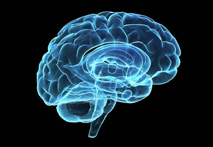 Scientists identified Brain patterns of Consciousness