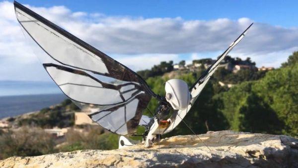 MetaFly- biomimetic controllable creature (5)