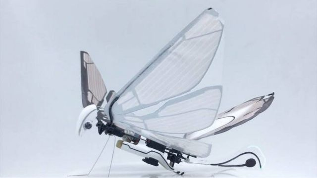 MetaFly- biomimetic controllable creature (3)
