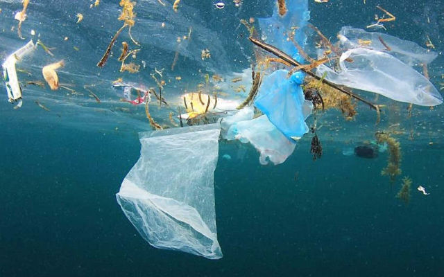 Plastic Pollution will double by 2030