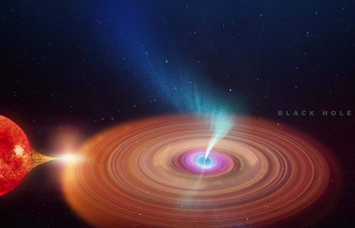 Animation of the Black Hole's precessing jets