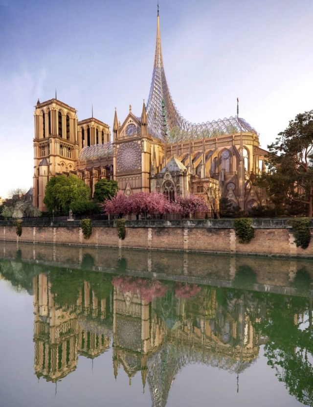 Paligenesis tribute to Notre-Dame (3)