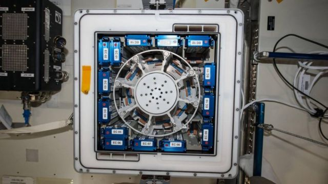 Slowing the Aging Process in Space