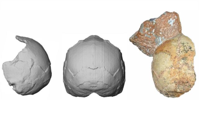 A 210,000-year-old skull discovered in Mani