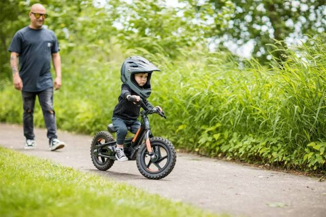 Harley-Davidson electric bikes for Kids (3)