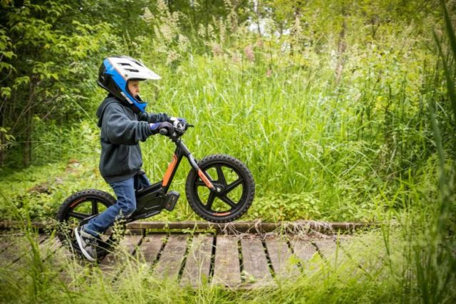 Harley-Davidson electric bikes for Kids (2)