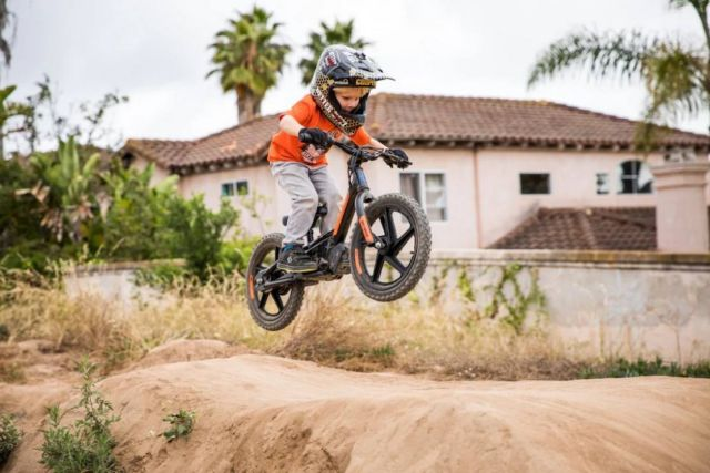 Harley-Davidson electric bikes for Kids (1)