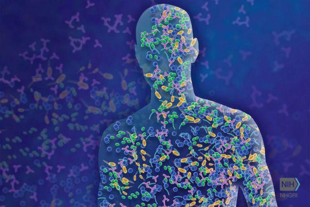 Genes in Human