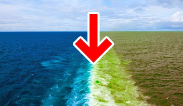 Why 2 Oceans don't Mix