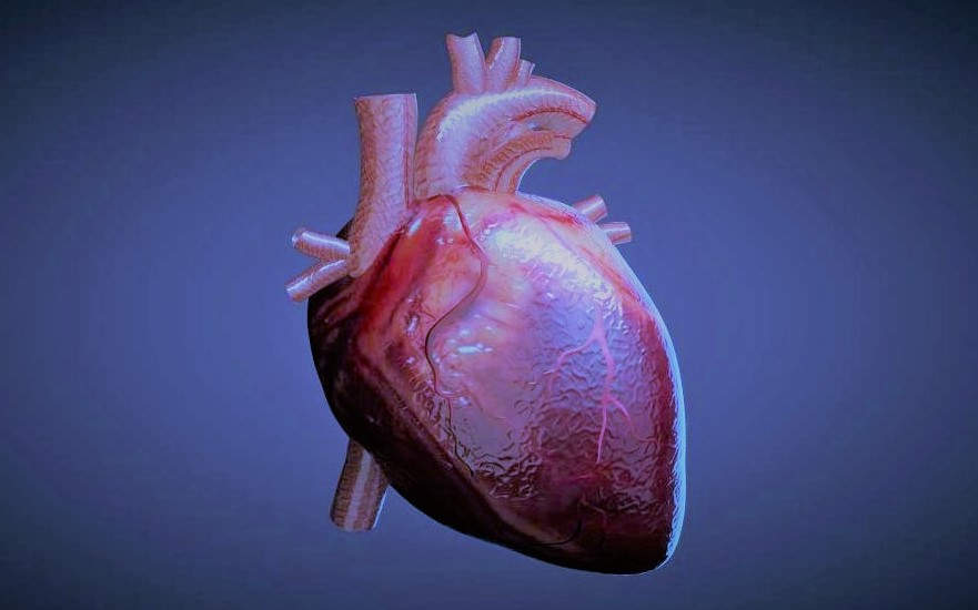Lab-grown Heart Cells transplanted to Human for the first time
