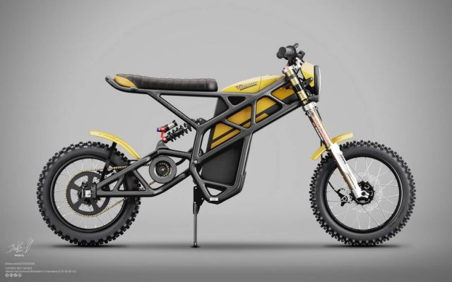 Truvor electric custom Scrambler (1)