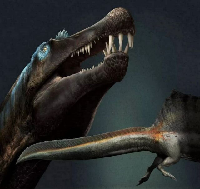 The first known Swimming Dinosaur was gigantic