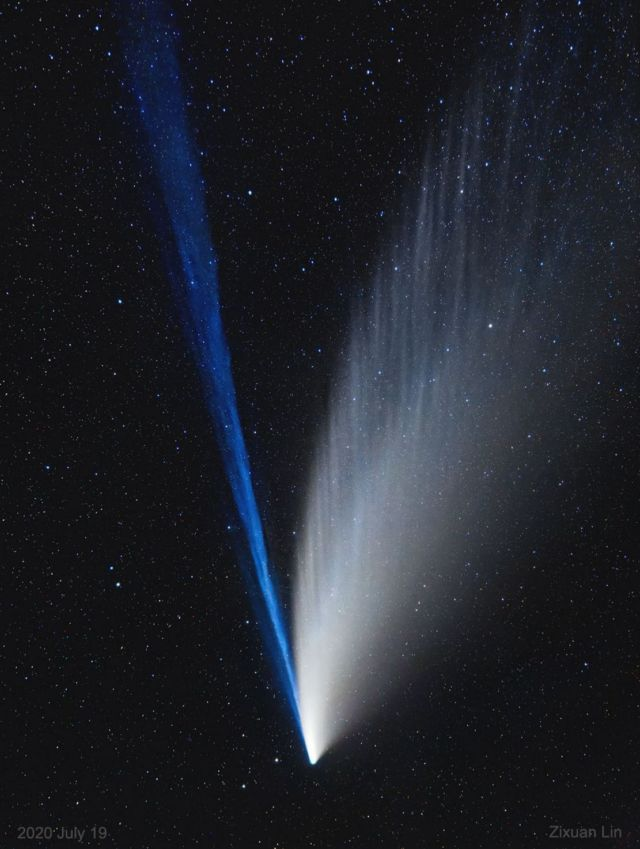 The Structured Tails of Comet NEOWISE