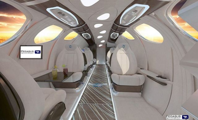 Pegasus Vertical Business Jet (9)
