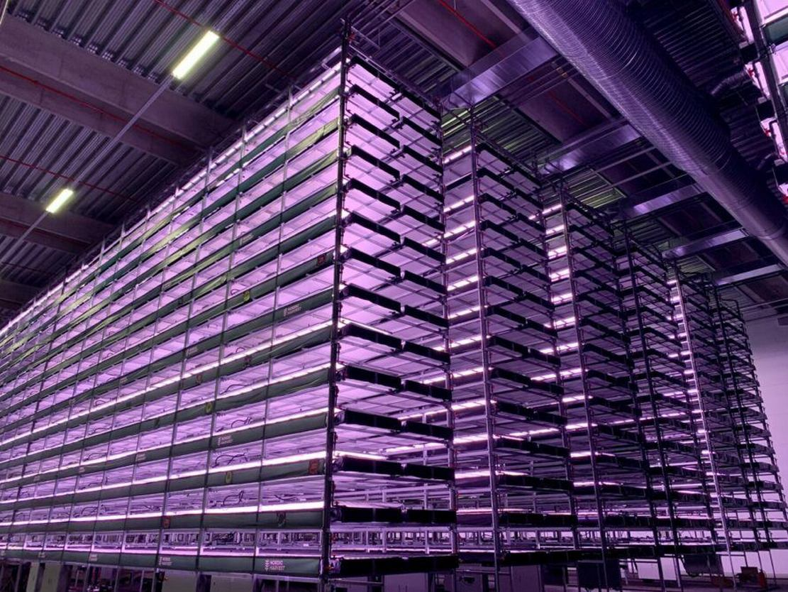 Construction of Europe's Largest Vertical Farm started