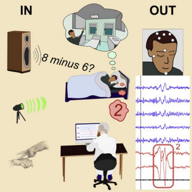 Real-Time Communication with Lucid Dreamers