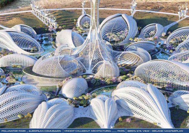 European Commission's Pollinator Park (12)