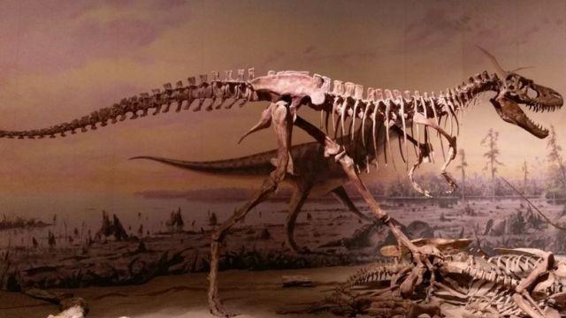 Dinosaurs Extinction (3)