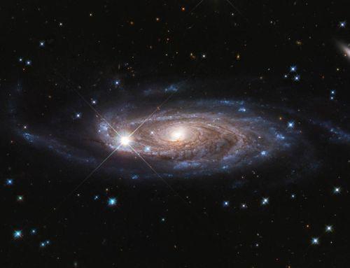 Rubin's Galaxy