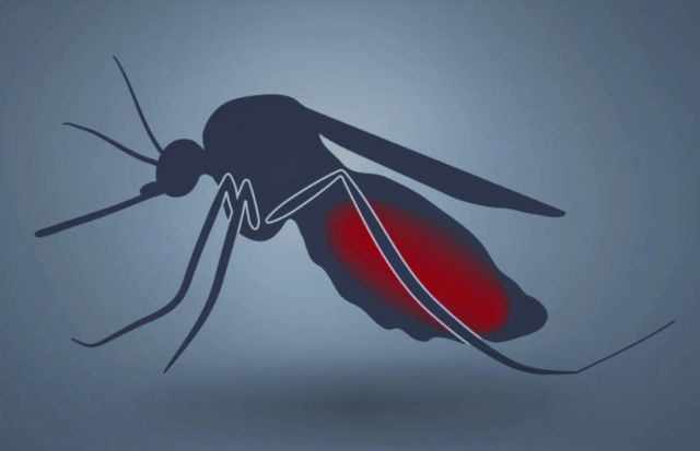 The world's first Malaria Vaccine approved